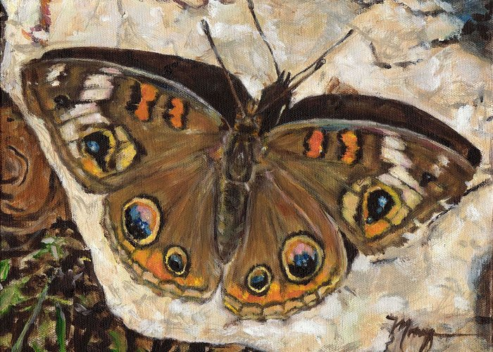 Butterfly Greeting Card featuring the painting Common Buckeye by Monique Hoch