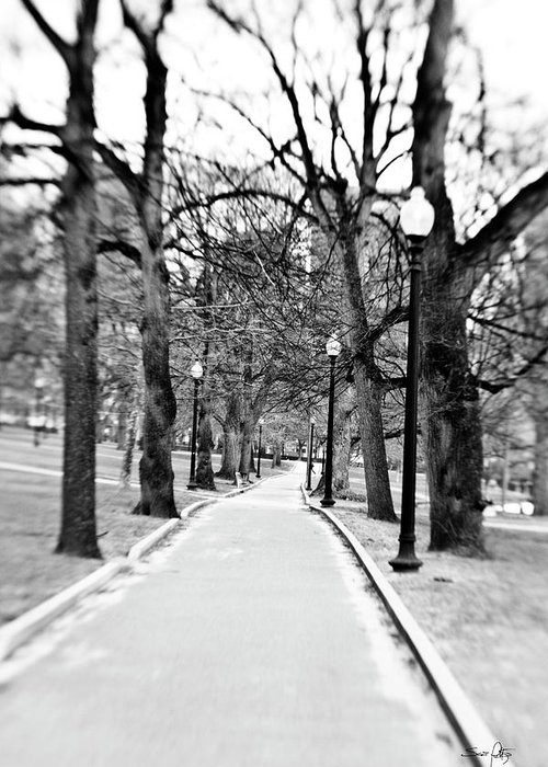 Black & White Greeting Card featuring the photograph Commons Park Pathway by Scott Pellegrin