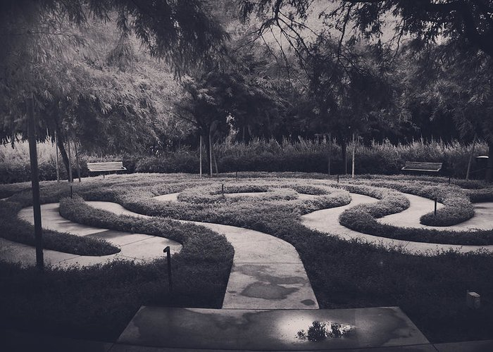 Labyrinths Greeting Card featuring the photograph Confusion by Laurie Search