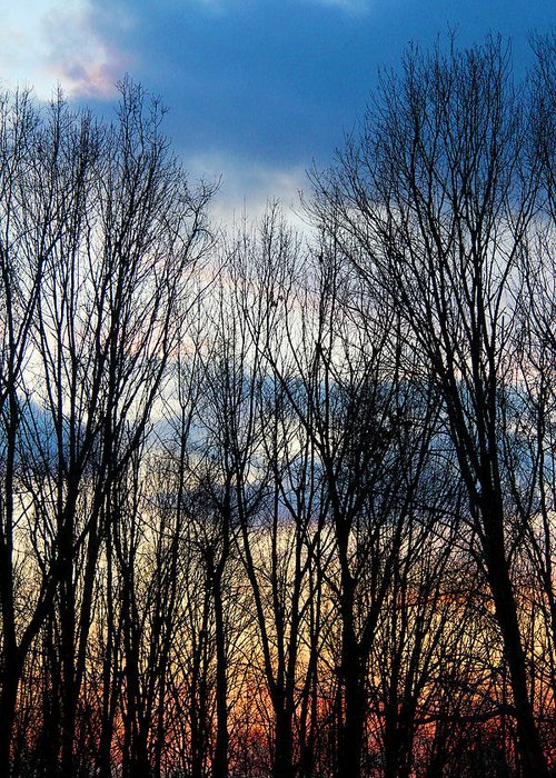 Sunset Greeting Card featuring the photograph Connecticut Sunset 3 by David Leiman