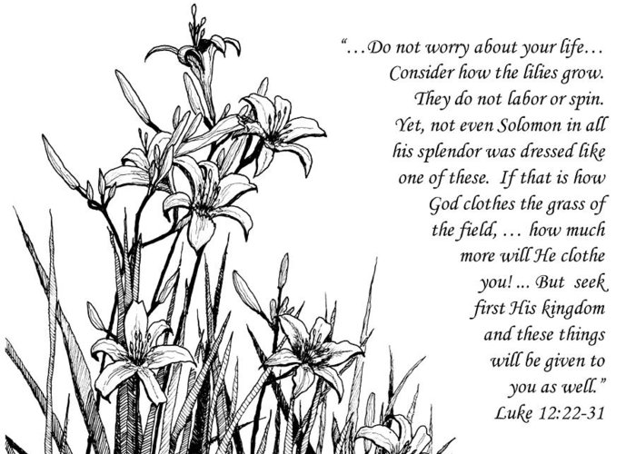 Consider How The Lilies Grow Greeting Cards