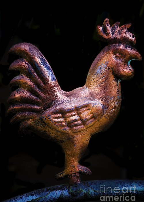 Copper Chicken Greeting Card featuring the photograph Copper Chicken by Mitch Shindelbower