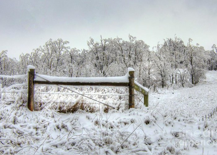 Corner Post Greeting Card featuring the photograph Corner Post Ice And Snow by M Dale