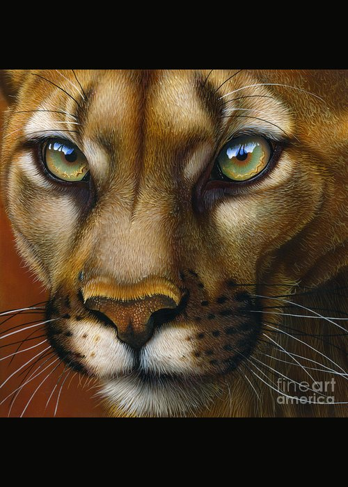 Cougar Greeting Card featuring the painting Cougar October 2011 by Jurek Zamoyski