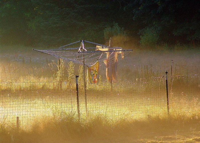 Misty Greeting Card featuring the photograph Country Clothesline by Jeri lyn Chevalier