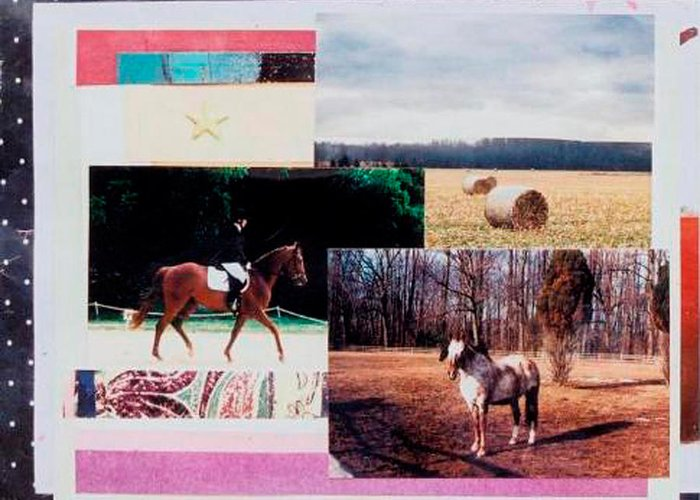 Horse Greeting Card featuring the mixed media Country Collage 6 by Mary Ann Leitch