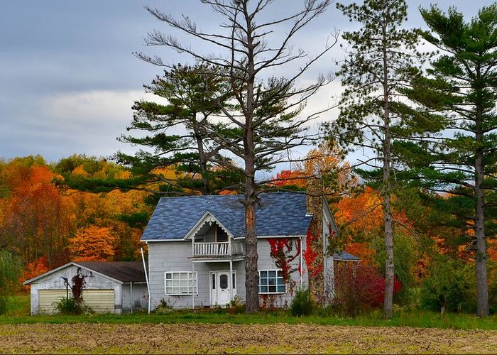 Autumn Scenes Greeting Card featuring the photograph Country Cottage In Autumn by Julie Dant