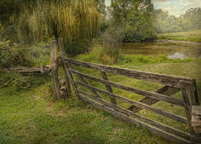 Savad Greeting Card featuring the photograph Country - Gate - Rural Simplicity by Mike Savad