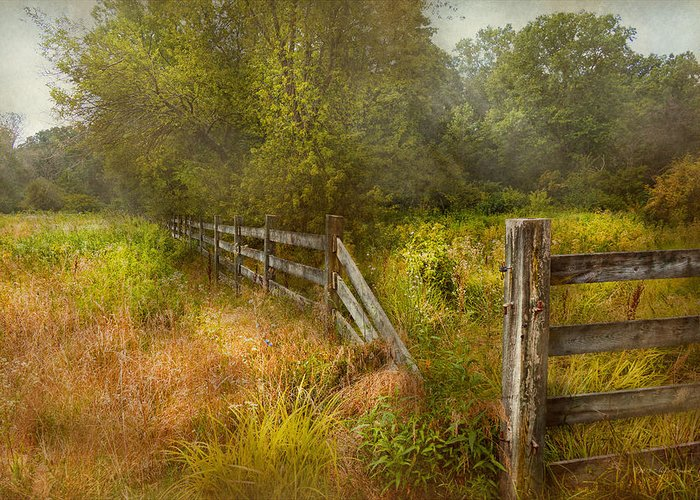 Savad Greeting Card featuring the photograph Country - Landscape - Lazy Meadows by Mike Savad