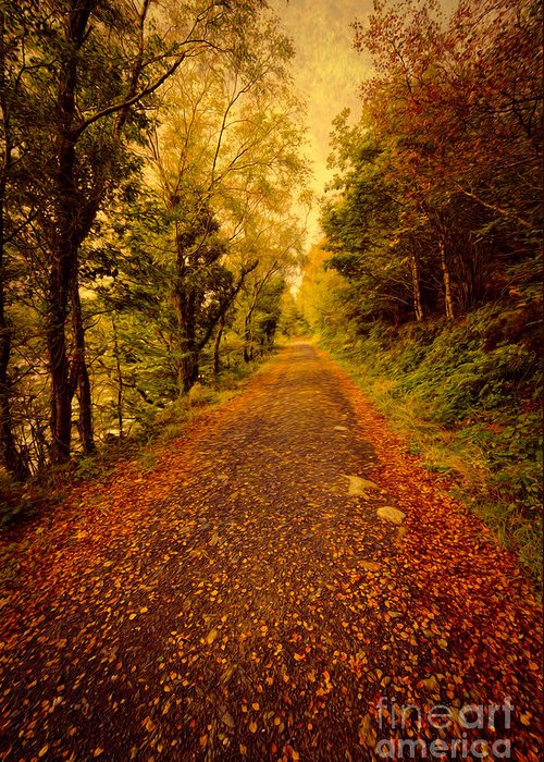 Autumn Greeting Card featuring the photograph Country Lane V2 by Adrian Evans