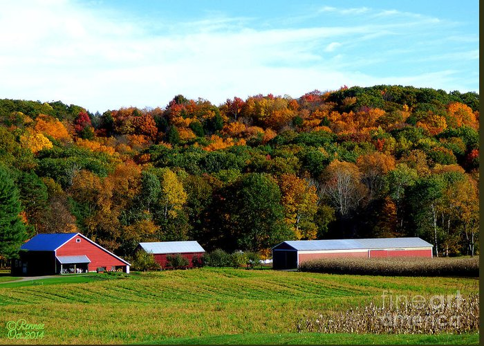 Landscape Greeting Card featuring the photograph Country Living by Rennae Christman