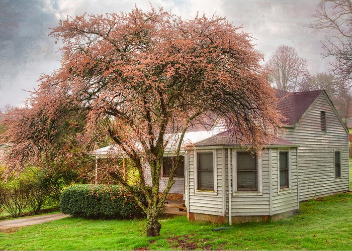 Appalachia Greeting Card featuring the photograph Country Pink by Debra and Dave Vanderlaan