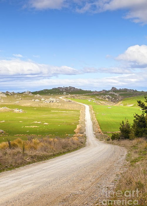 Copy Space Greeting Card featuring the photograph Country Road Otago New Zealand by Colin and Linda McKie