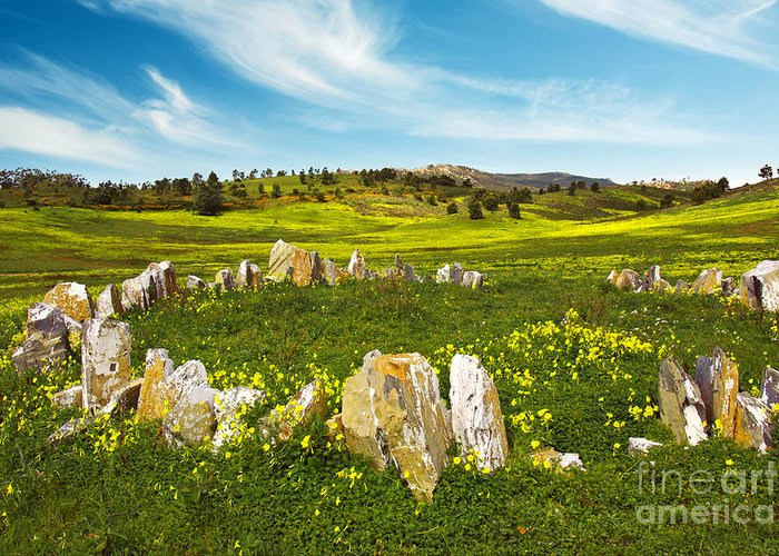 Agriculture Greeting Card featuring the photograph Countryside With Stones by Carlos Caetano