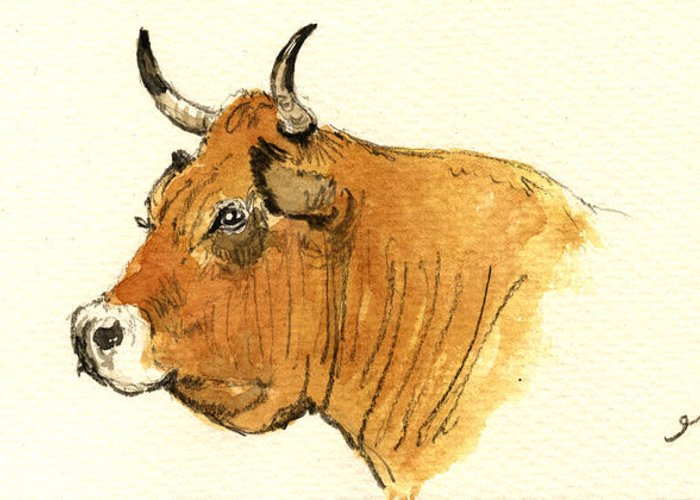 Ox Greeting Cards