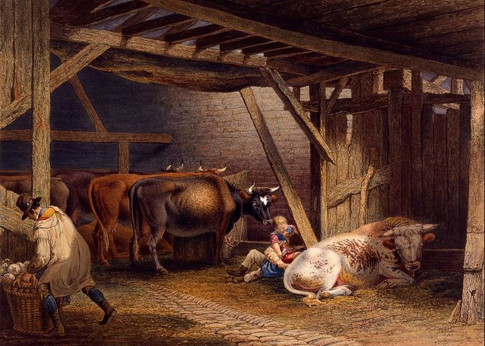 Cattle-shed Drawings Greeting Cards