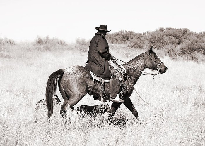 Cowboy Greeting Card featuring the photograph Cowboy And Dogs by Cindy Singleton