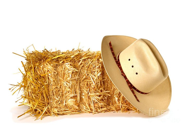 Western Greeting Card featuring the photograph Cowboy Hat On Straw Bale by Olivier Le Queinec