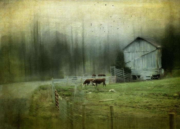 Barn Greeting Card featuring the photograph Cows By The Road by Kathy Jennings