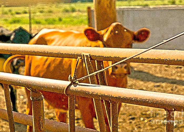 Cow Art Photographs Greeting Card featuring the photograph Cows Coming Home by Artist and Photographer Laura Wrede