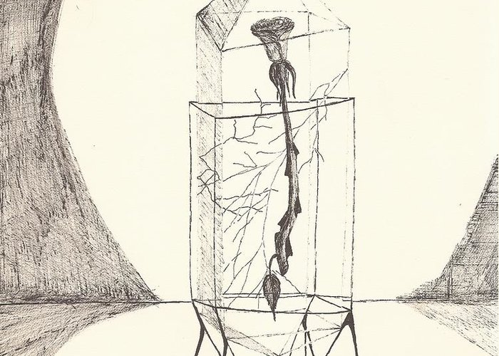 Pen And Ink Greeting Card featuring the drawing Cracked... Sketch by Robert Meszaros