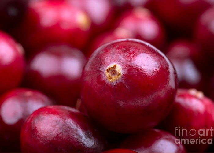 Autumn Greeting Card featuring the photograph Cranberry Closeup by Jane Rix