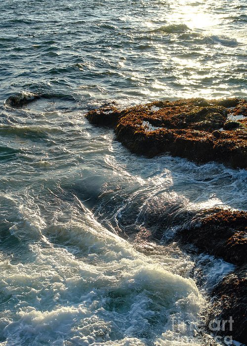 Maine Greeting Card featuring the photograph Crashing Waves by Olivier Le Queinec