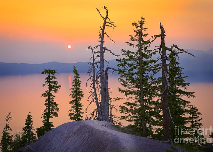America Greeting Card featuring the photograph Crater Lake Trees by Inge Johnsson