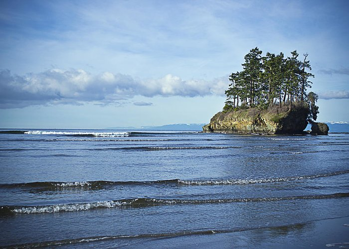 Ocean Greeting Card featuring the photograph Crescent Bay #2 by Roy Cage