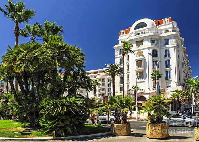 Cannes Greeting Card featuring the photograph Croisette Promenade In Cannes by Elena Elisseeva