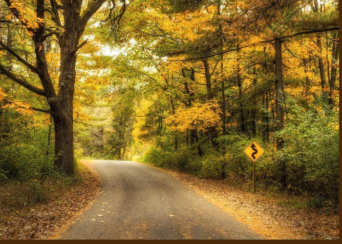 Autumn Greeting Card featuring the photograph Curves Ahead by Scott Norris