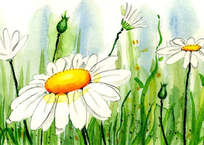 Watercolor Greeting Card featuring the painting Daisy Field by Annie Troe