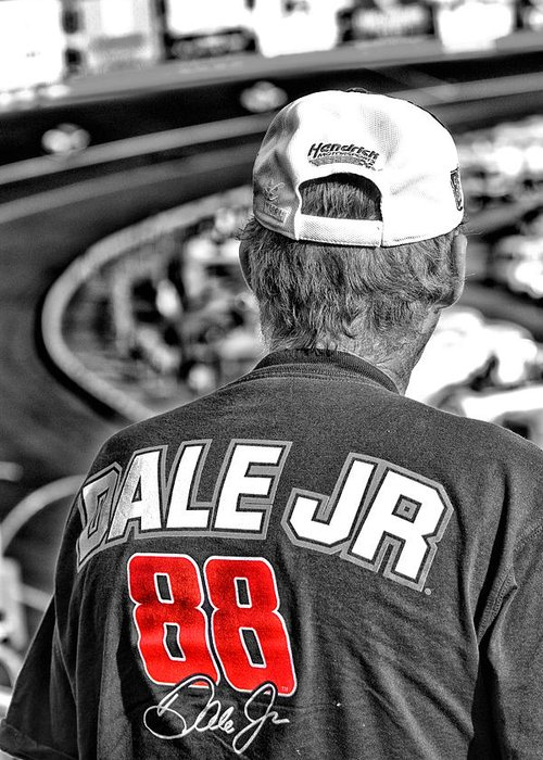 Dale Greeting Card featuring the photograph Dale Jr by Karol Livote