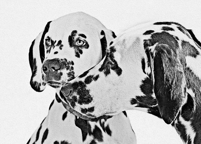 101 Greeting Card featuring the painting Dalmatians - A Great Breed For The Right Family by Christine Till