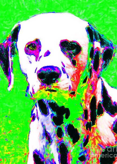 Animal Greeting Card featuring the photograph Dalmation Dog 20130125v3 by Wingsdomain Art and Photography