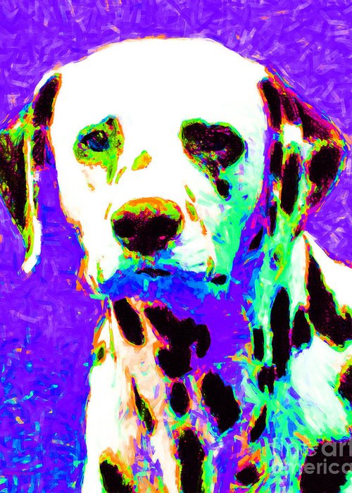 Animal Greeting Card featuring the photograph Dalmation Dog 20130125v4 by Wingsdomain Art and Photography