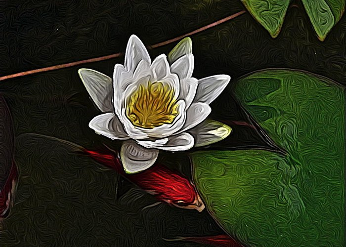 Water Garden Greeting Card featuring the digital art Dark Water by Jen Brooks Art