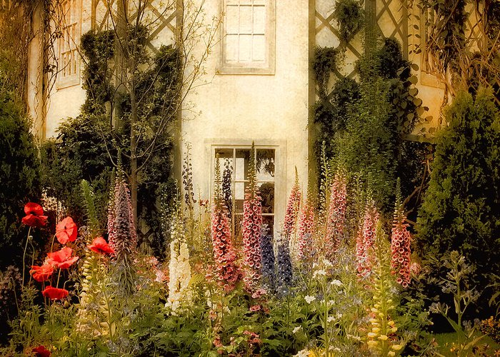 Garden Greeting Card featuring the photograph Darwin's Garden by Jessica Jenney
