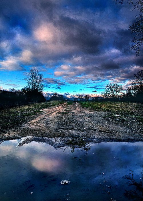 Puddle Greeting Card featuring the photograph Dead End by Phil Koch