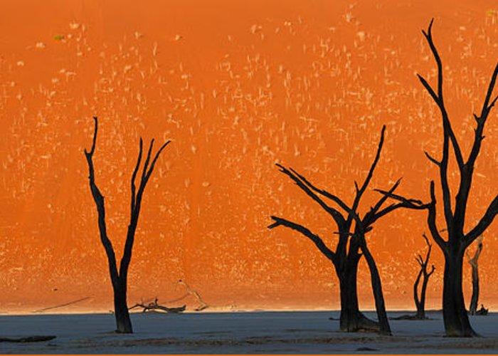 Namib Naukluft National Park Greeting Cards