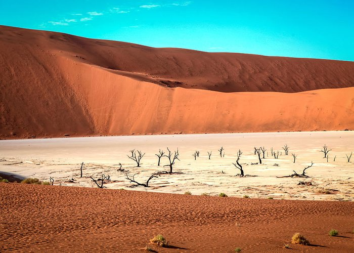 Namibia Greeting Card featuring the photograph Deadvlei by Gregory Daley MPSA