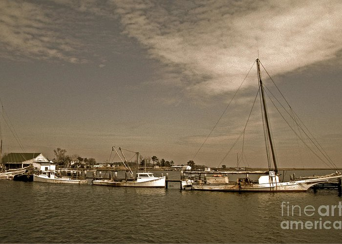 Sailing Gear Greeting Card featuring the photograph Deal Island Fishing Boats by Skip Willits