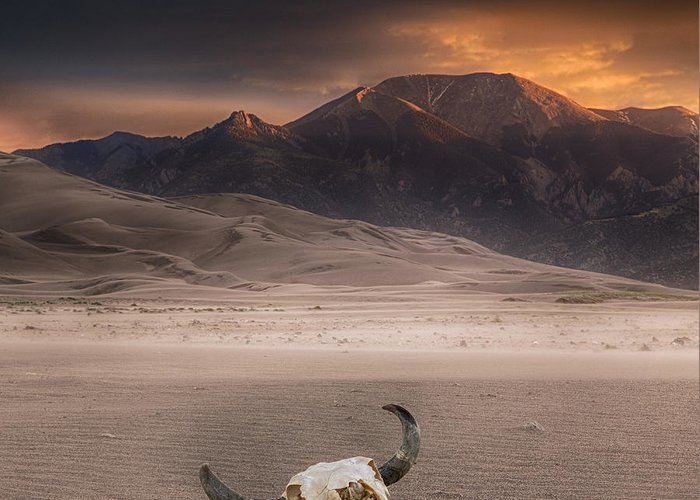 Great Sand Dunes National Park Greeting Card featuring the photograph Death In The Desert by Jerry Fornarotto