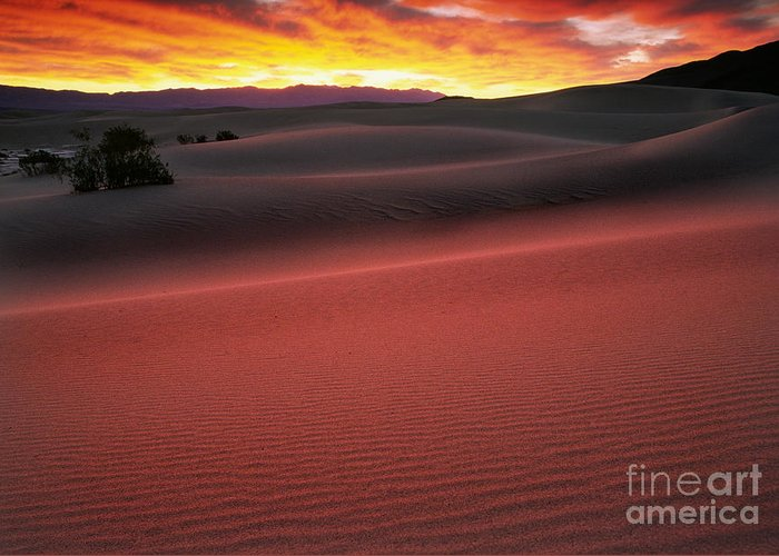 America Greeting Card featuring the photograph Death Valley Sunrise by Inge Johnsson