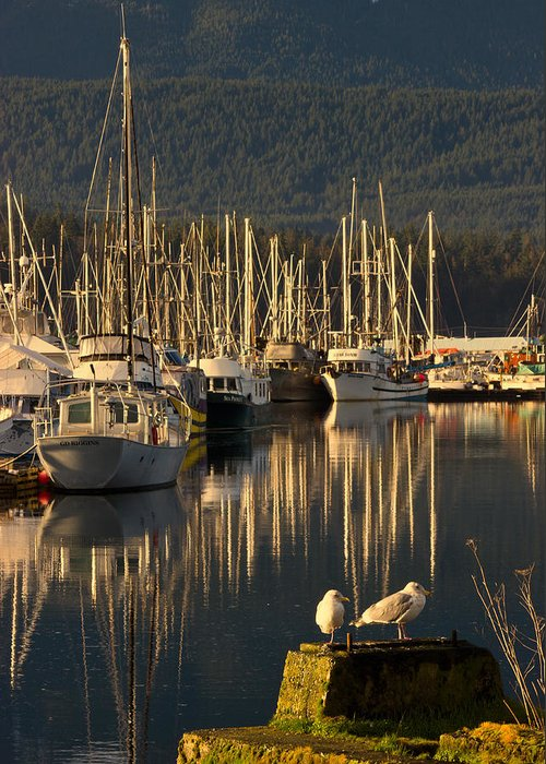 Water Greeting Card featuring the photograph Deep Bay by Randy Hall