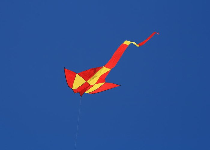 Blue Greeting Card featuring the photograph Deep Blue Sky And Kite by Phoenix De Vries