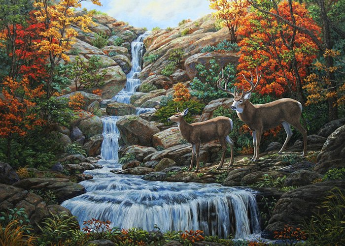 Water Greeting Card featuring the painting Deer Painting - Tranquil Deer Cove by Crista Forest
