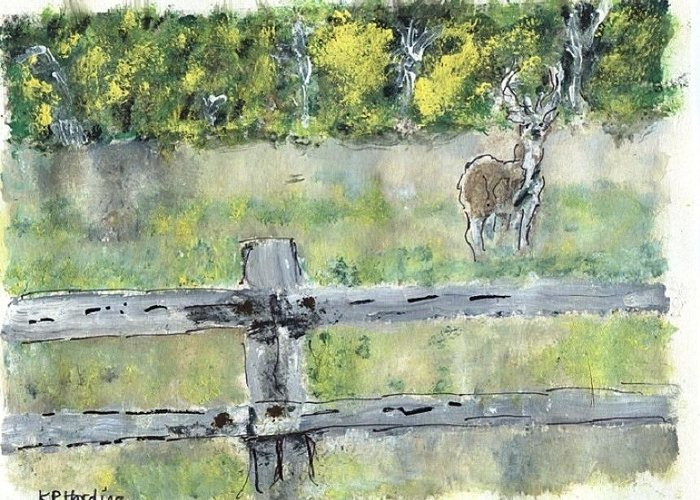 Greeting Card featuring the painting Deer Scene by Kevin Harding