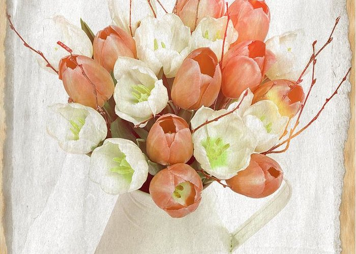 White Tulips Greeting Card featuring the photograph Deluxe Peach Tulips by Debra Miller