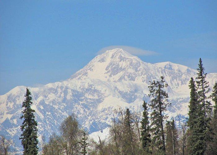 Alaska Greeting Card featuring the photograph Denali by Larry Marano